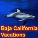 Baja California Vacations